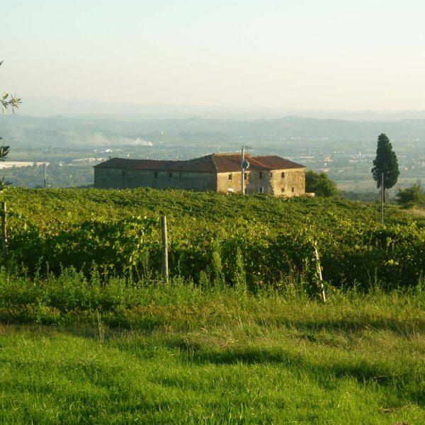 Panoramica-Montalbano