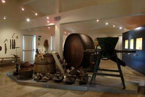 Centro per la Cultura del Vino I Lecci