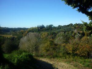 Sentiero Montaione